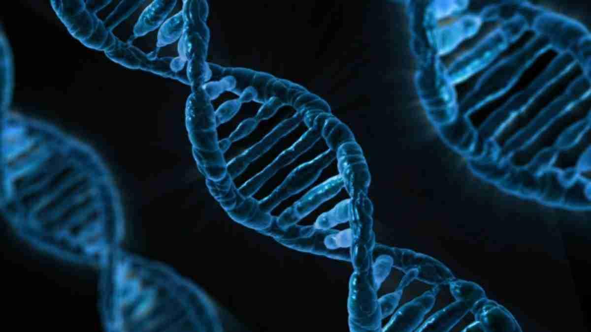 DNA.pixabay