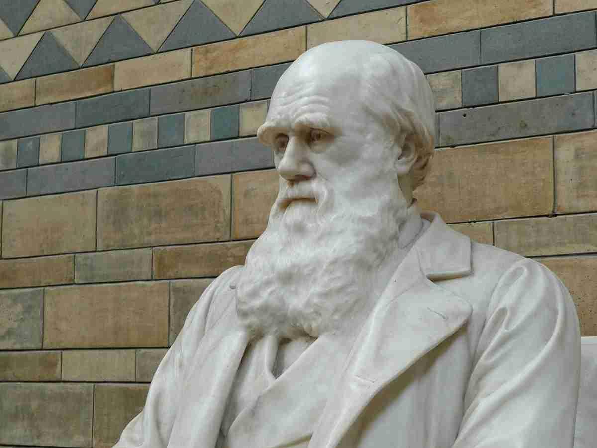 Charles_Darwin_Nat._Mus.pixabay