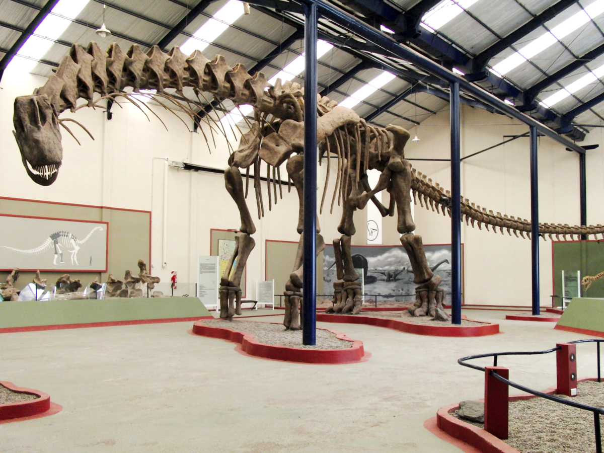 Argentinosaurus_skeleton,_PLoS_ONE.wikipedia