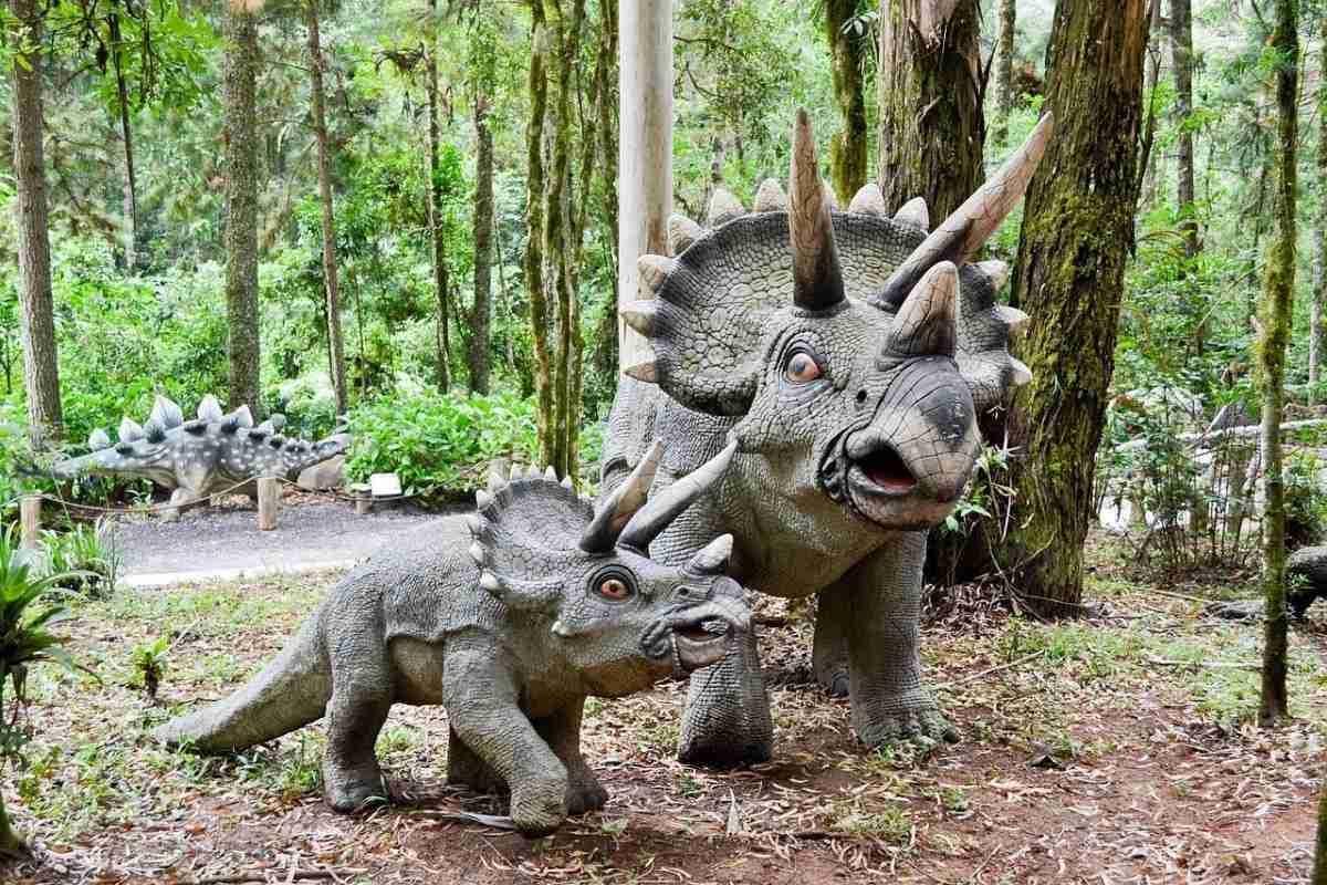 triceratops-pixabay