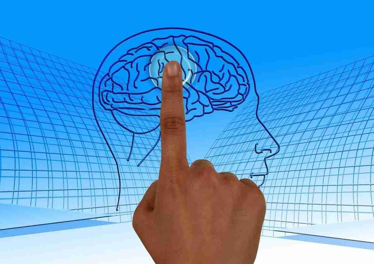 zijn_wij_ons_brein-pixabay