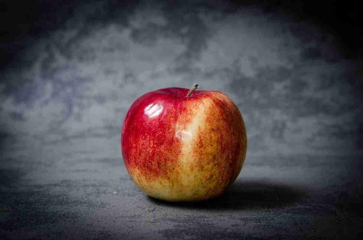 appel_kennis-pixabay