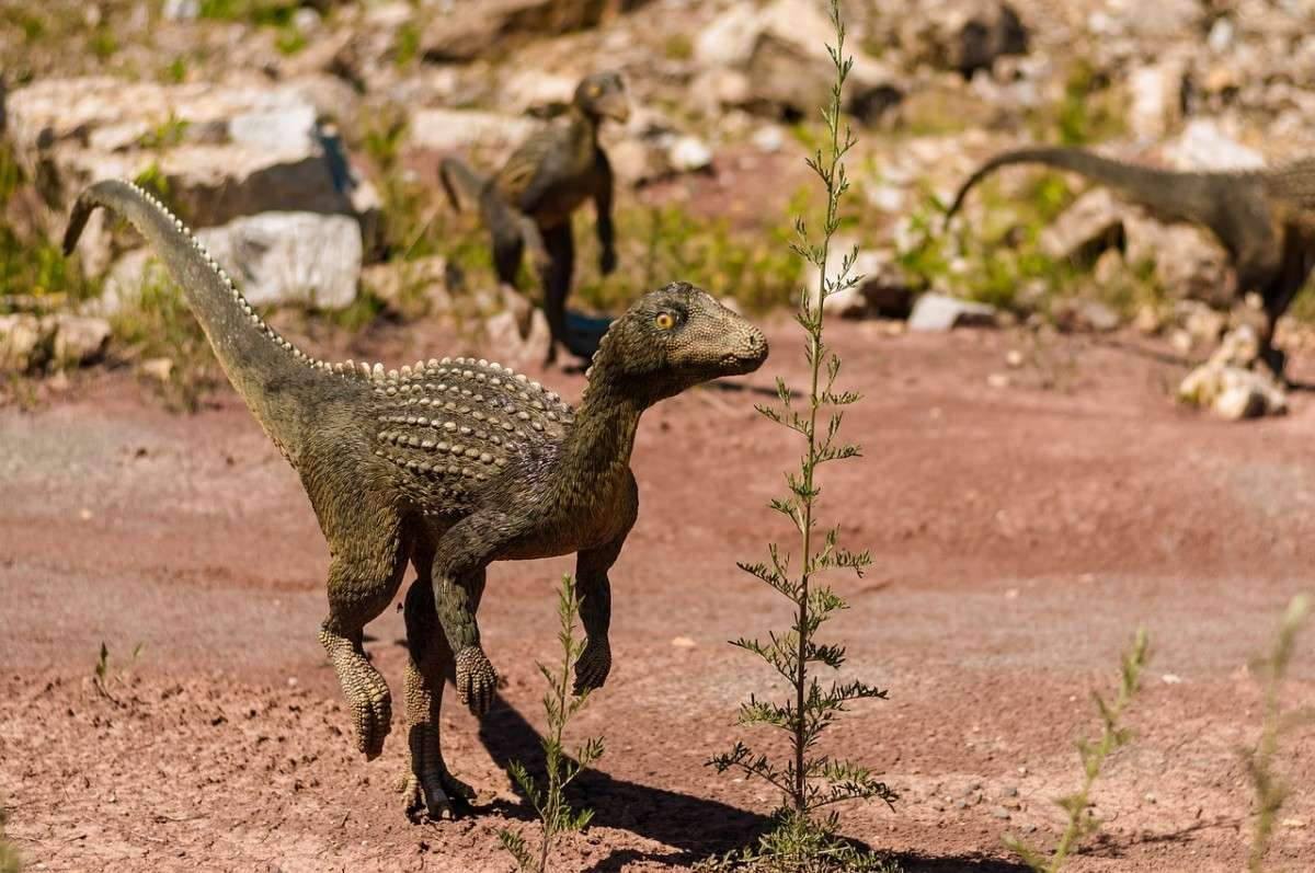 dinosaur-958004_1280-pixabay