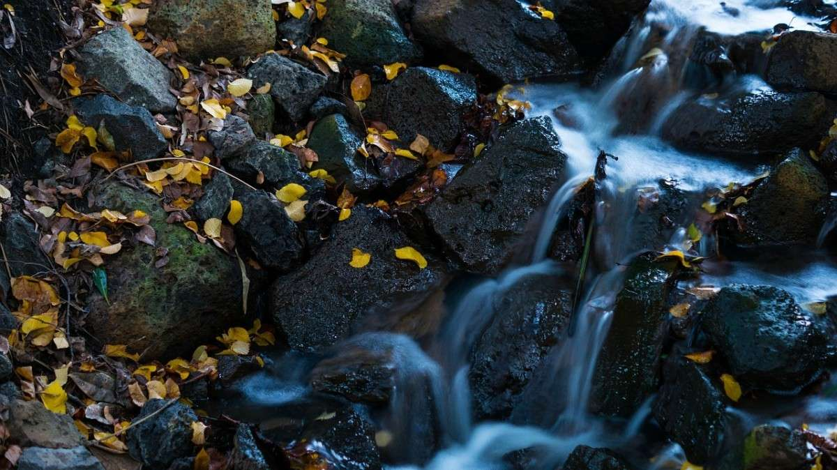 waterval-bladeren-pixabay