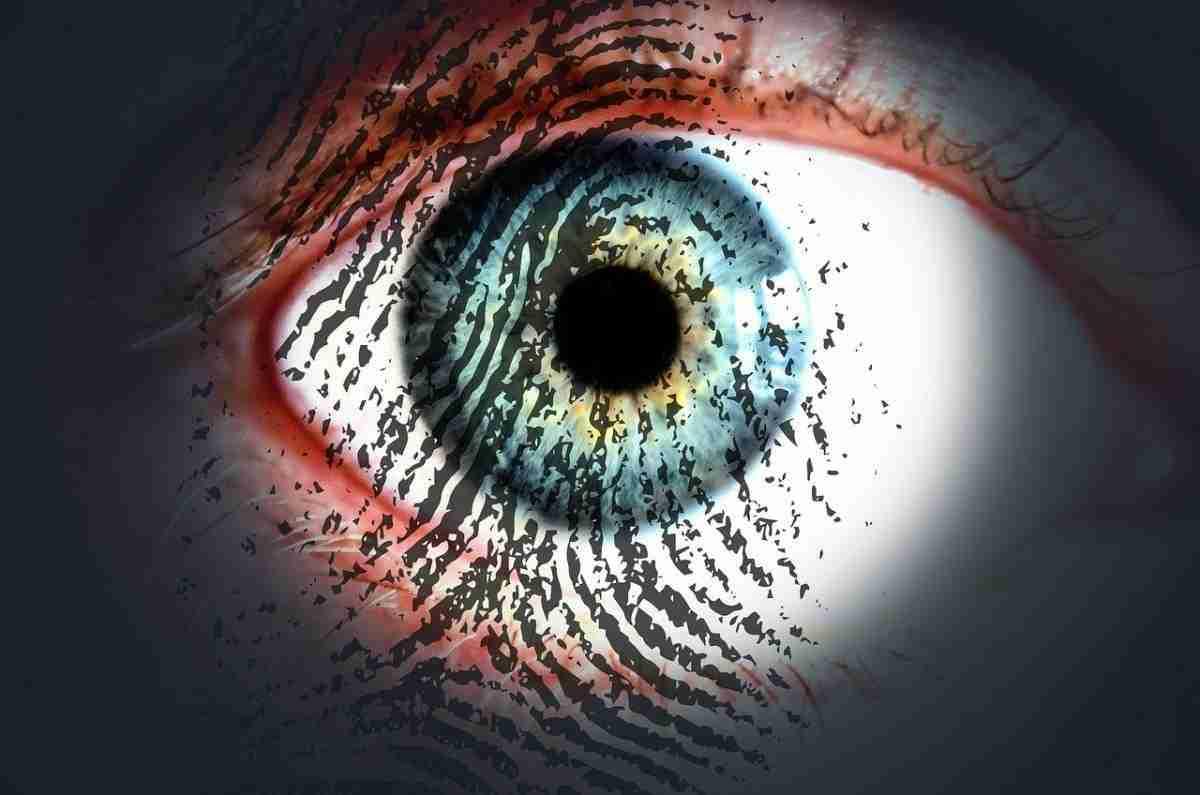 vingerafdruk_oog.pixabay