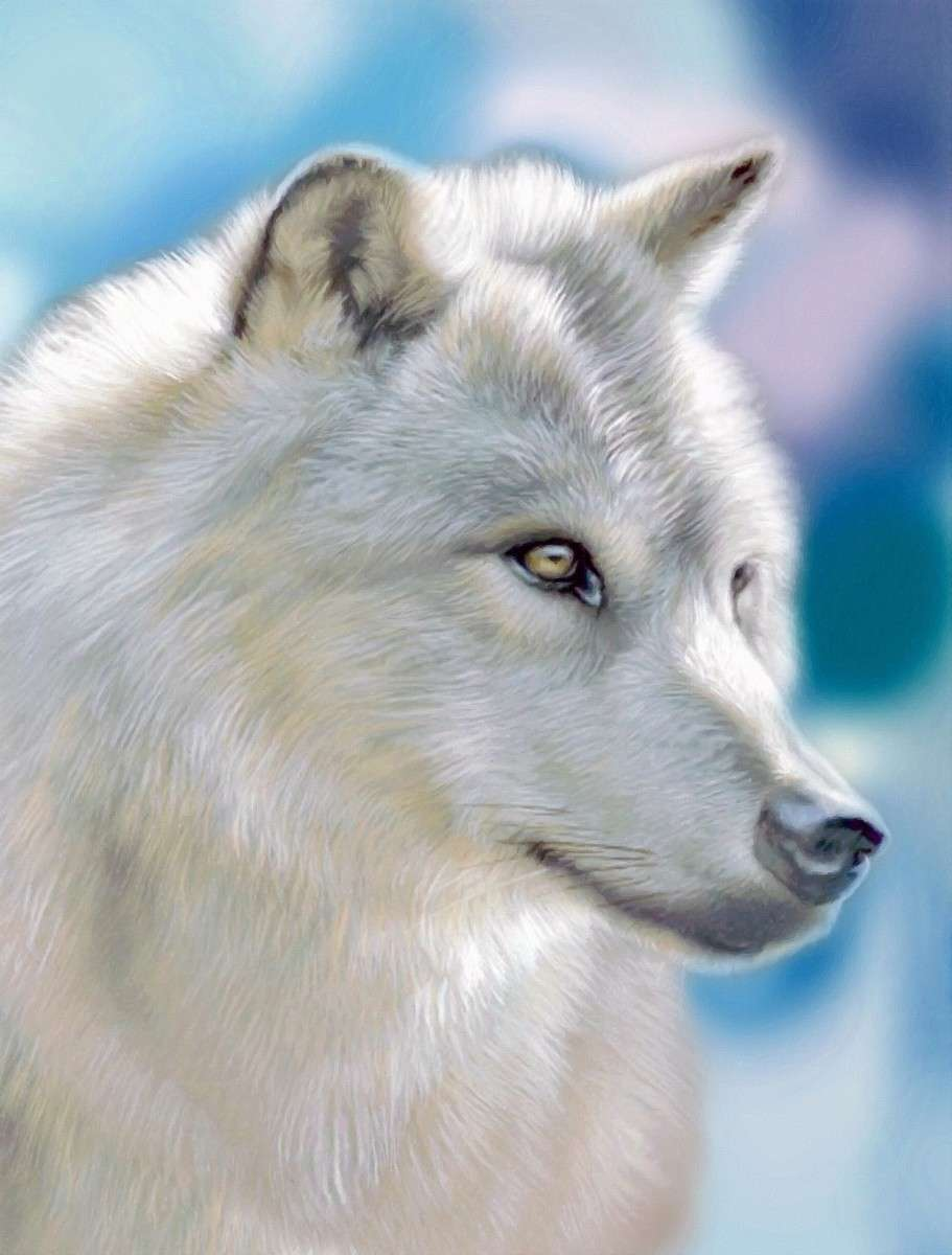 Zilverwolf.pixabay