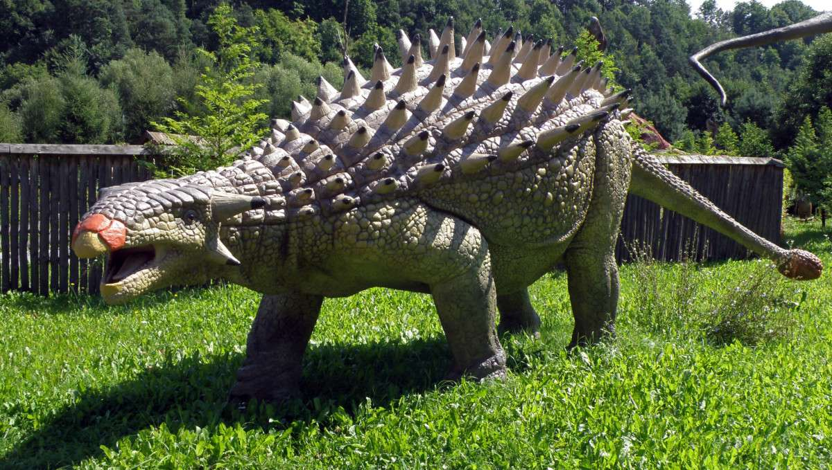 Nodosaurus, ankylosauria