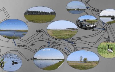 Een extra afvoerpunt voor de IJssel; de Bypass