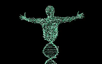 Genetic entropy (genetisch verval): de stille moordenaar – Een vernietigend argument tegen evolutie